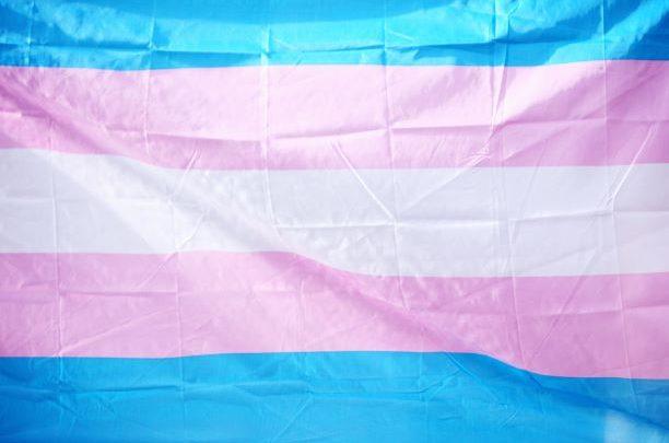 Trans Flag blue pink white pink blue vertical strips
